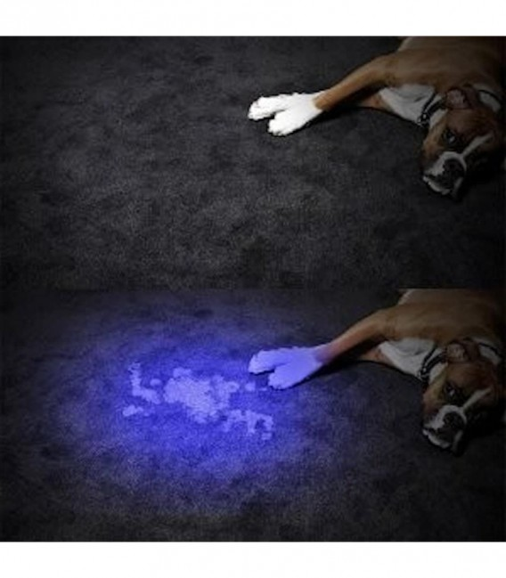 Mini latarka przenośna typu Lampa UV