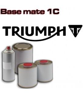 Lakier TRIUMPH - wszystkie kolory w puszce