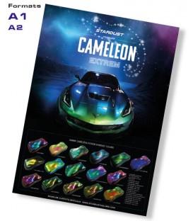Plakaty Kameleon Extrem